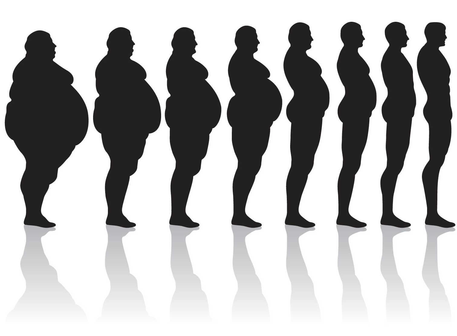 Fat Men Weight Gain Progression